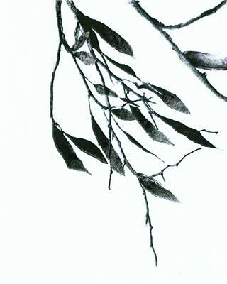 A Single Branch Art Print by Ann Powell
