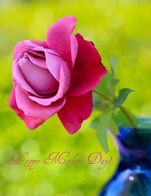 Photograph - A Single Rose II Mother's Day Card by Heidi Smith