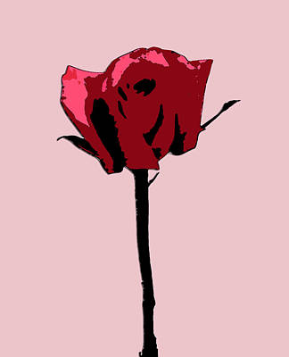 A Single Rose Print by Karen Nicholson