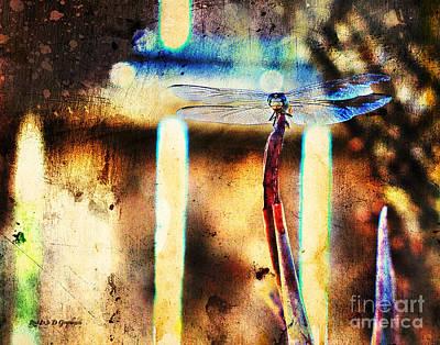 Digital Art - A Single Wish by Rhonda Strickland