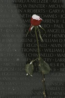 War Monuments And Shrines Photograph - A Snow Dusted Rose Speaks Of Lasting by Karen Kasmauski