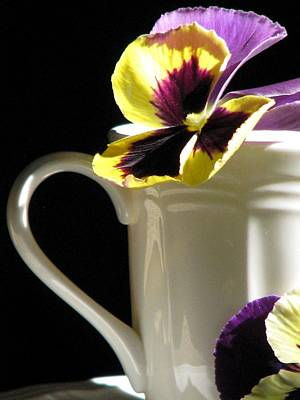 Art Print featuring the photograph A Spring Brunch by Angela Davies