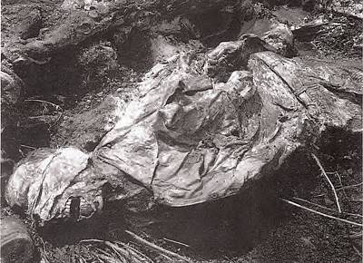 Dod Photograph - A Srebrenica Genocide Victim Recovered by Everett