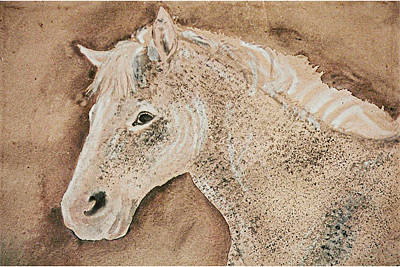 A Stallion Art Print by Remy Francis