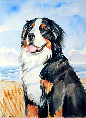 Bernese Mountain Dog Painting - A Summer Day - Bernese Mountain Dog by Lyn Cook