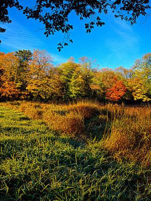 Autumn Leaf Photograph - A Sunday Stroll by Phil Koch