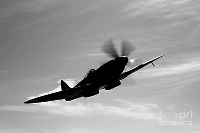 A Supermarine Spitfire Mk-18 In Flight Art Print by Scott Germain