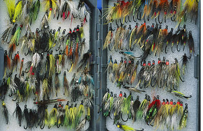 A Tackle Box Full Of Colorful Flies Art Print by Bill Curtsinger