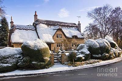 A Thatched Cottage In The Cotswolds  Print by Andrew  Michael
