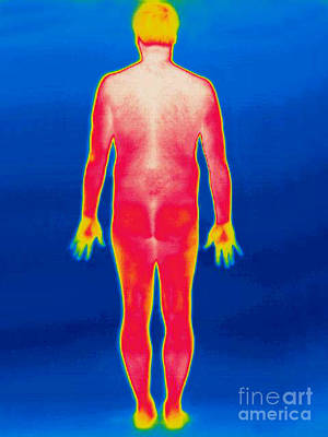 A Thermogram Of A Nude Man Back Art Print