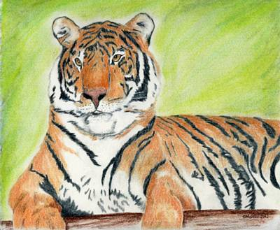 A Tiger's Rest Art Print by Mark Schutter