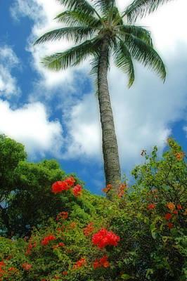 A Touch Of The Tropics Art Print by Lynn Bauer