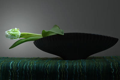 A Tulip Still Life. Original