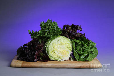Romaine Photograph - A Variety Of Lettuce by Photo Researchers, Inc.