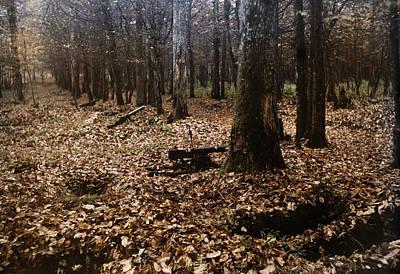 Belleau Wood Photograph - A View Of Belleau Wood Battlefield by Gervais Courtellemont