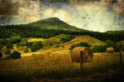 A View Of Jump Mountain Art Print by Kathy Jennings