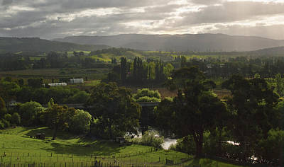 Photograph - A View Of Tasmania's Macquarie Plains by Odille Esmonde-Morgan