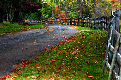 Photograph - A Walk In An Autumn Afternoon by Emanuel Tanjala
