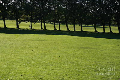 Dog In Landscape Photograph - A Walk In The Park.. by Andy  Mercer