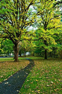 Photograph - A Walk In The Park by Dan Mihai