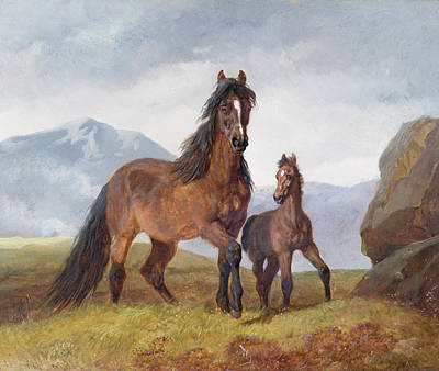 A Welsh Mountain Mare And Foal Art Print by John Frederick Herring Snr