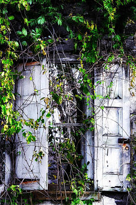 Weed Digital Art - A Window To The Past by Bill Cannon