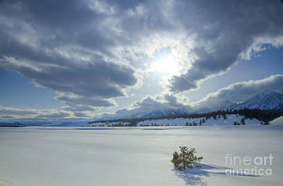 A Winter Sky Art Print by Idaho Scenic Images Linda Lantzy