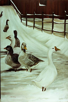 Snow Geese Painting - A Winter's Walk by Sheila Kinsey