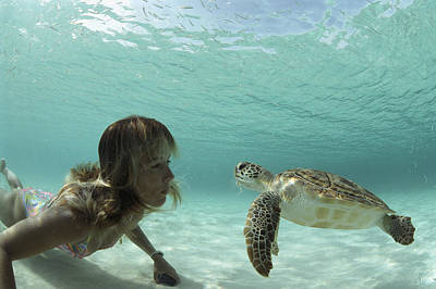 Green Sea Turtle Photograph - A Young Woman Swimming Face-to-face by Bill Curtsinger