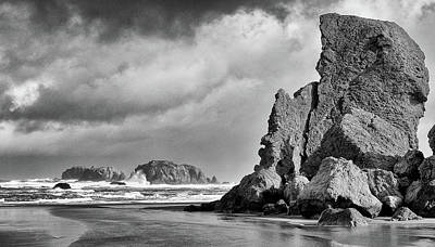 Photograph - Abandon At Bandon by Kevin Munro