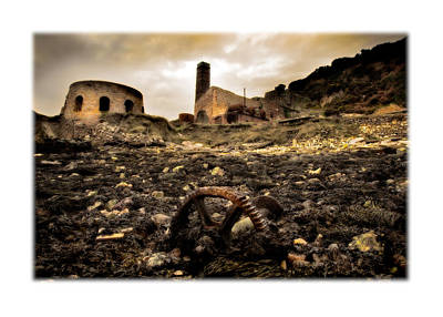 Porth Wen Photograph - Abandoned Brickworks by Mal Bray