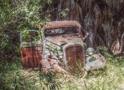 Abandoned Art Print by Cindy Nunn