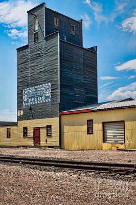 Abandoned Feed Elevator Art Print by Lawrence Burry