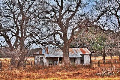 Art Print featuring the photograph Abandoned House 512.3 by Joe Finney