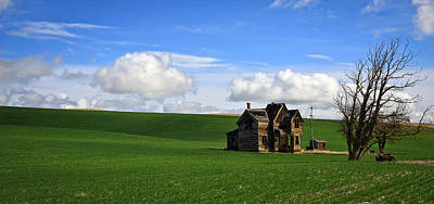 Abandoned House On Green Pasture Art Print by Steve McKinzie