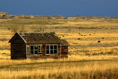 Abandoned Ranch Photograph - Abandoned Schoolhouse by Tam Graff