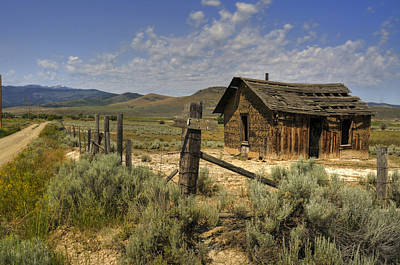 Photograph - Abandoned Shack by Don Wolf
