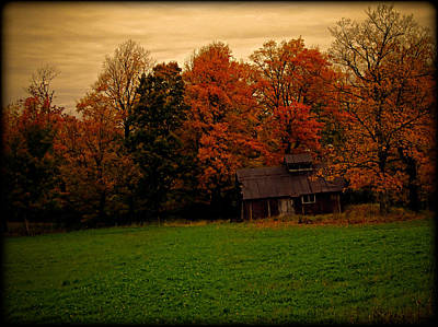 Photograph - Abandoned Shanty Enveloped In Orange Fall Foliage by Chantal PhotoPix