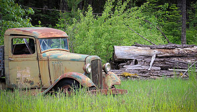 Art Print featuring the photograph Abandoned by Steve McKinzie