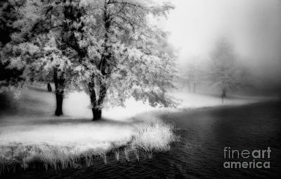 Abbots Lake In The Fog Bw Art Print
