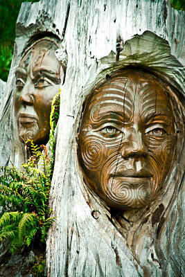 Photograph - Abel Tasman Wood Faces by Jonathan Hansen