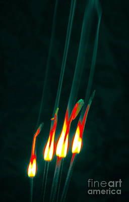 Photograph - Ablaze C by Cindy Lee Longhini