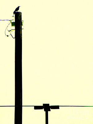 Telephone Poles Photograph - Above The Din by Joe Jake Pratt