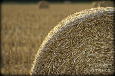 Photograph - Abstract Bale by Clare Bambers