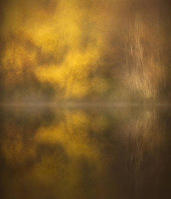 Without People Photograph - Abstract Birch Reflections by Andy Astbury