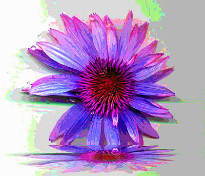 Art Print featuring the photograph Abstract Daisy by Carolyn Repka