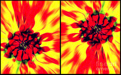 Photograph - Abstract One Diptychs by Ken Frischkorn