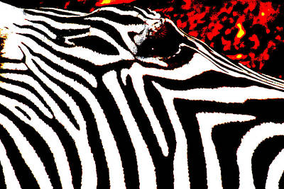 Abstract Zebra 001 Art Print by Lon Casler Bixby