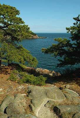 Acadia In Maine Art Print by Rick Frost