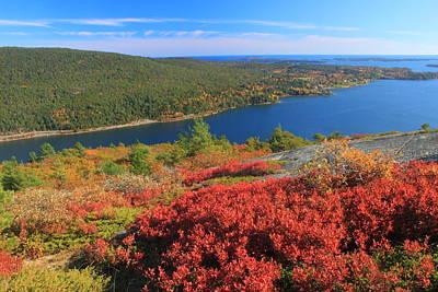 Acadia Mountain Foliage And Somes Sound Art Print